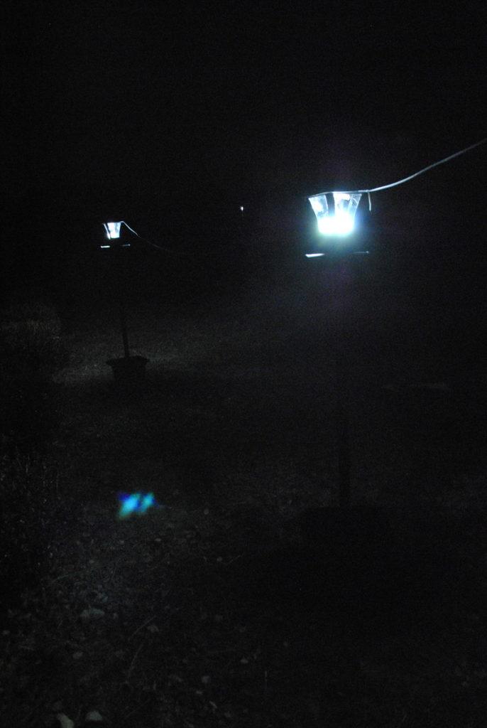 ガマソニックソーラーランププランターを改造後の写真